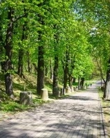 Park Piszczele, alejka.jpeg