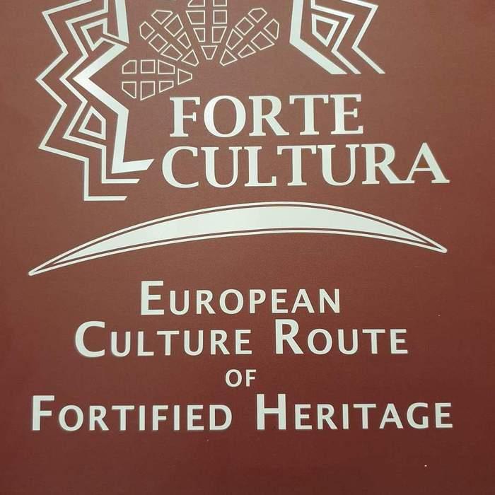Galeria forte cultura