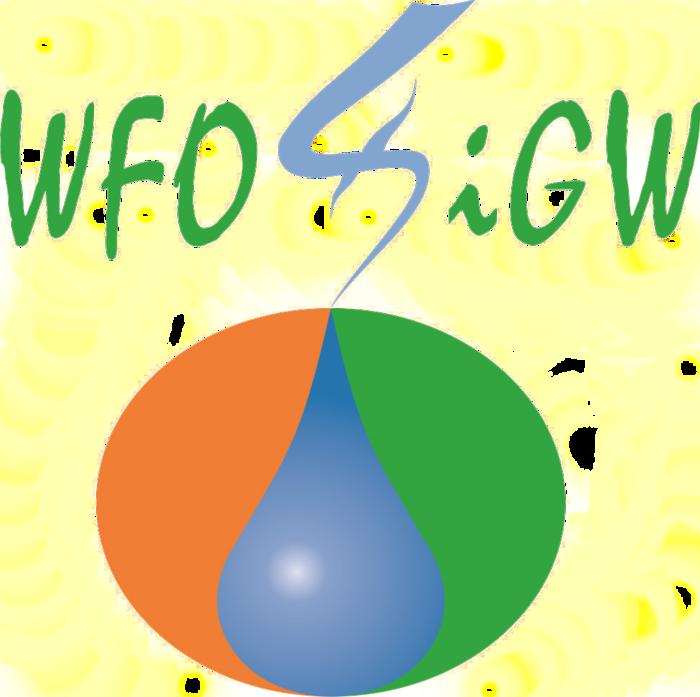 logo(bez tła) WFO i GW.png