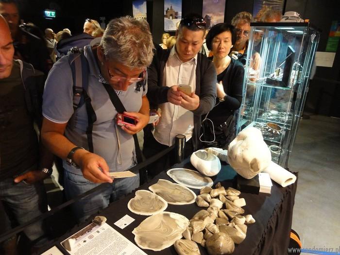 Galeria EXPO Mediolan 2015