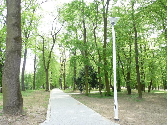 """Galeria """"Rewaloryzacja Parku Miejskiego w Sandomierzu– etap II"""