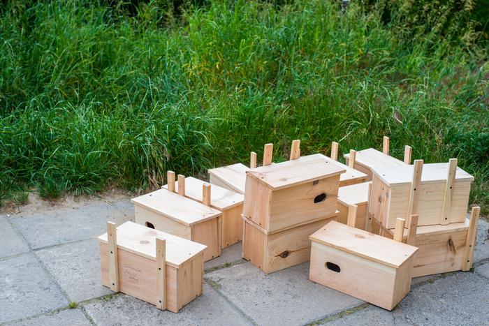 Galeria Wieszanie budek lęgowych dla jerzyków