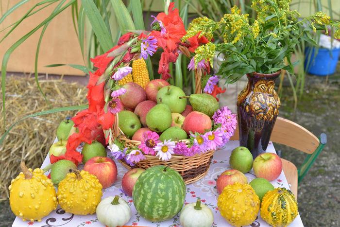 19. Na zdjęciu kosz z owocami